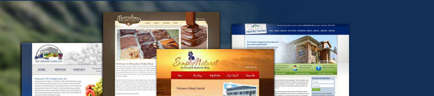 Hawaii Website Design banner for Infinity Consulting